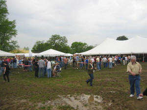 St. Louis Brewers Heritage Festival
